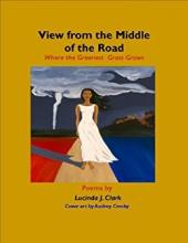 lucinda clark book cover