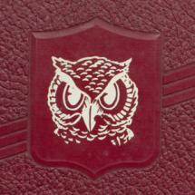 yearbook cover with owl