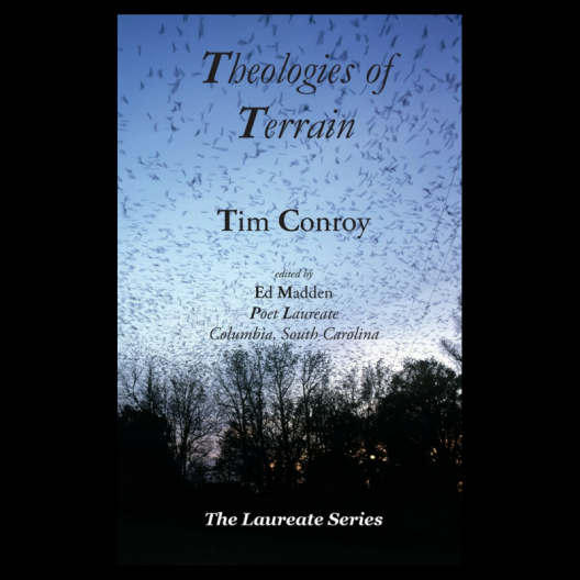 Theologies of Terrain cover