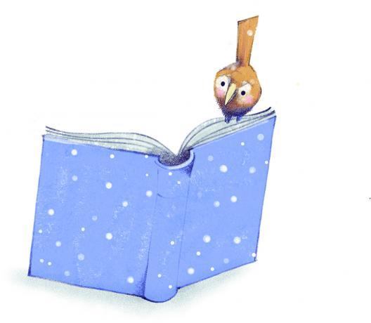 bird sitting on open book